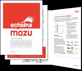 Mozu Commerce Platform, Echidna eCommerce Minneapolis