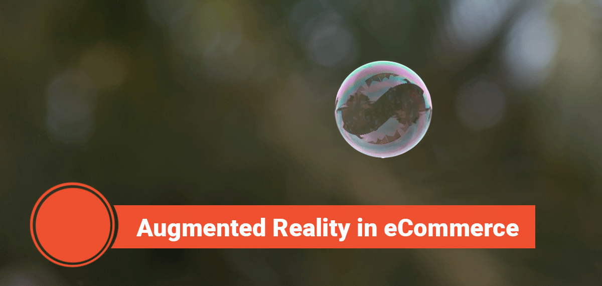 Augmented Reality in eCommerce, Echidna