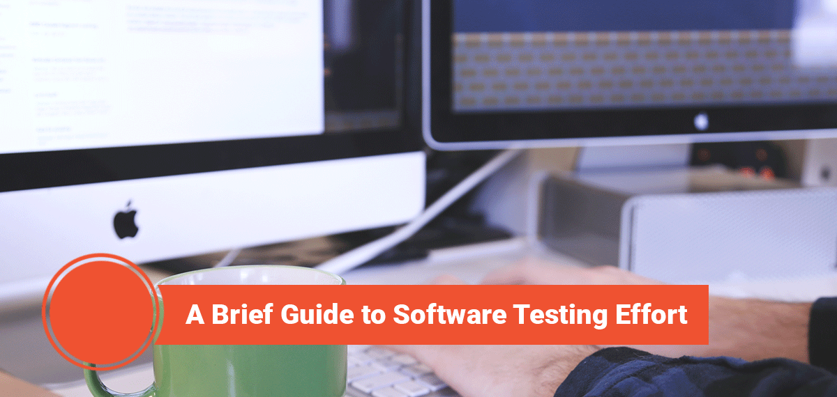 Brief Guide to Software Testing, Echidna eCommerce Minneapolis