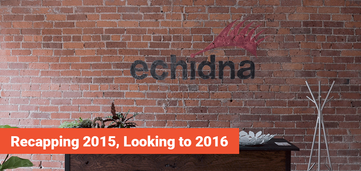 Echidna Minneapolis eCommerce Agency, Recapping 2015 and Looking to 2016