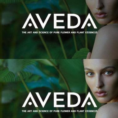 aveda-echidna-ecommerce-agency-minneapolis