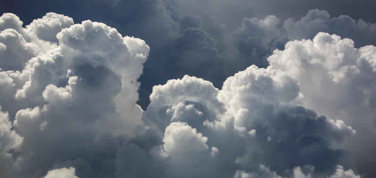 Cloud eCommerce Primer; Echidna Minneapolis eCommerce Agency; Design + Technology + Marketing; Cloud-based eCommerce
